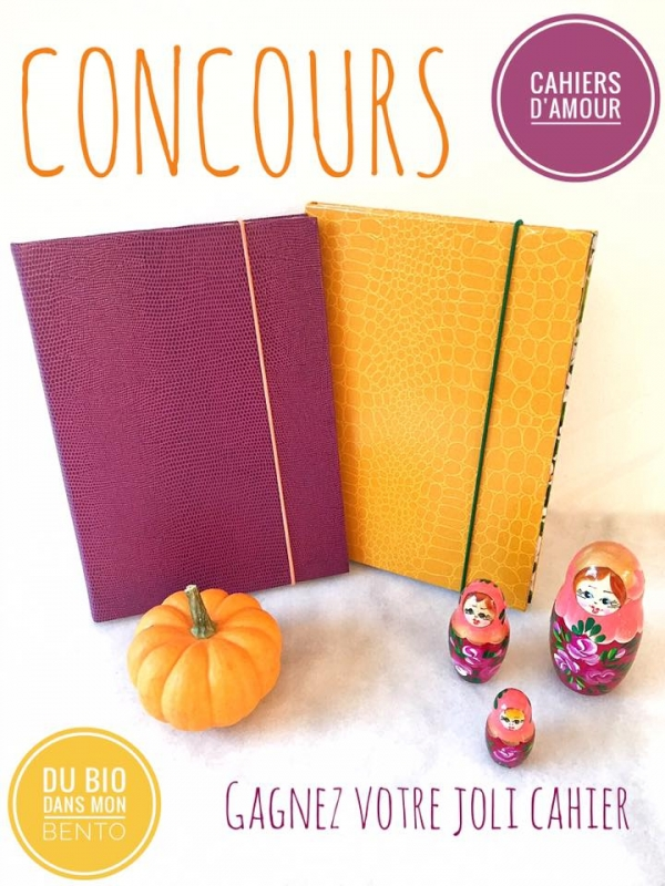 annonce concours DBDMB
